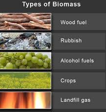 Typesofbiomass